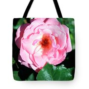 Perfectly Pink Palm Springs Tote Bag