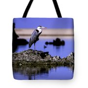 Perfectly Still Tote Bag