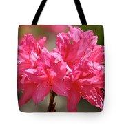 Periscope Pink Tote Bag