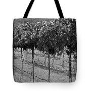 Perissos Winery Tote Bag