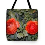 Persian Buttercups Tote Bag
