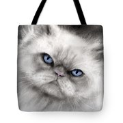 Persian Cat With Blue Eyes Tote Bag