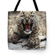 Persian Leopard Cub Snarling Tote Bag