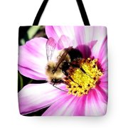 Persistence Into October Tote Bag