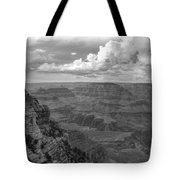 Perspective V Tote Bag