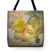 Peruvian Lily Framed Tote Bag