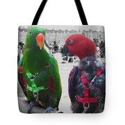 Pet Parrots In A Cafe Tote Bag
