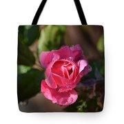 Petals Of Dew Tote Bag