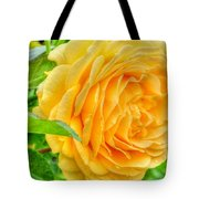 Petals Of Sunshine Tote Bag