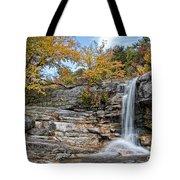 Peterskill Falls Tote Bag