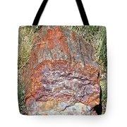 Petrified Stump Tote Bag