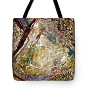 Petrified Wood In Crystal Forest In  Petrified Forest National Park-arizona Tote Bag