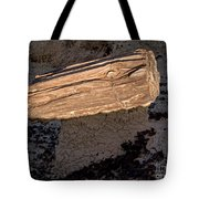 Petrified Wood On A Pedestal Tote Bag