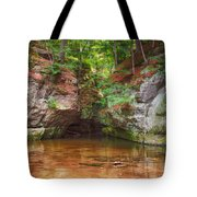 Pewits Nest Tote Bag