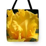 Phaeton Finery Tote Bag
