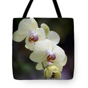 Phal Ming Chao Dancer 0754 Tote Bag