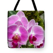 Phalaenopsis Orchid Hawaii All Profit Benefit Hospice Of The Calumet Area Tote Bag