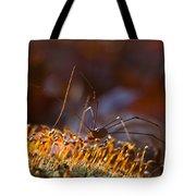 Phalangid Among The Moss Capsules Tote Bag