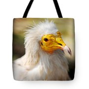 Pharaoh Chicken. Egyptian Vulture Tote Bag