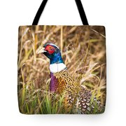 Pheasant Portrait Tote Bag