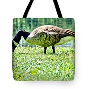 Philly Goose In The Grass Tote Bag