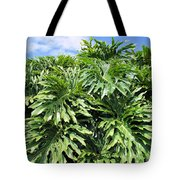 Philodendron 1 Tote Bag