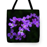 Phlox Blossoms Tote Bag