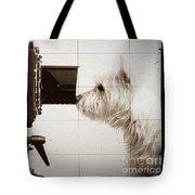 Pho Dog Grapher - Ground Glass View Tote Bag