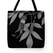 Phoenix Fall 05 Tote Bag
