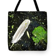 Lost Feather And Leaf Tote Bag