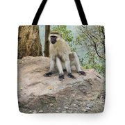 Photogenic Monkey Tote Bag