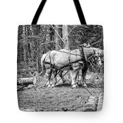 Photograph Of Horses Pulling Logs In Maine Forest Tote Bag