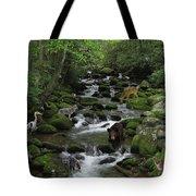 Photographer's Dream Tote Bag