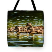 Photography Painting Of Mother And Her Ducklings Tote Bag