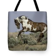 Picasso Leaps Tote Bag