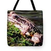 Pickerel Frog Tote Bag