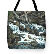 Picnic At The Falls Tote Bag