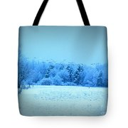 Picture Perfect Landing Tote Bag