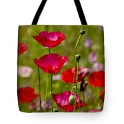 Picture Perfect Too Tote Bag