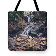Picturesque Tote Bag by Laurie Search