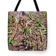 Picturesque Pondhawk Tote Bag