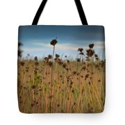 Pieces Of Light Tote Bag