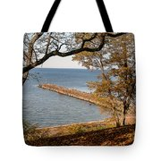 Pier In The Fall Tote Bag