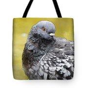 Pigeon Bath Tote Bag