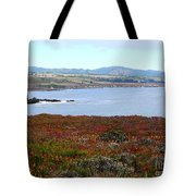 Pigeon Point Bay Tote Bag