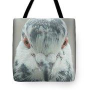 Pigeon Portrait En Face Tote Bag