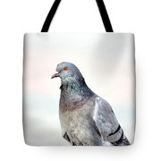 Pigeon Portrait Tote Bag