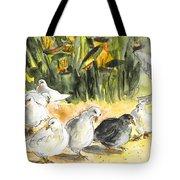 Pigeons In Benidorm Tote Bag