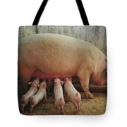 Momma Pig And Piglets Tote Bag by Terry DeLuco