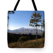 Pikes Peak Landscape Tote Bag